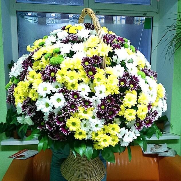 Корзина нежной кустовой хризантемы